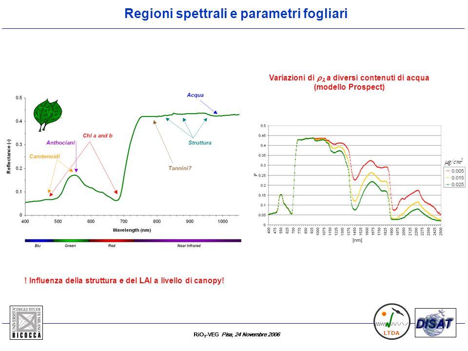 RiO 3 -VEG Pisa, 24 Novembre 2006 LTDA Regioni spettrali e parametri fogliari ! Influenza della struttura e del LAI a livello di canopy! Variazioni di