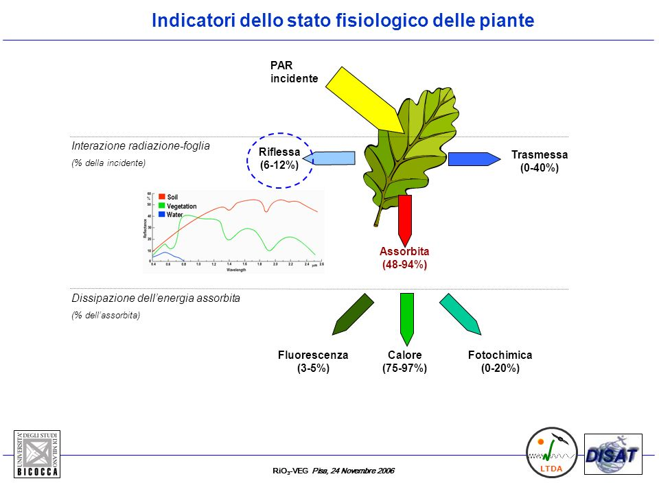 RiO 3 -VEG Pisa, 24 Novembre 2006 LTDA Riflessa (6-12%) Calore (75-97%) Fluorescenza (3-5%) Assorbita ) (48-94%) Fotochimica (0-20%) PAR incidente Tra