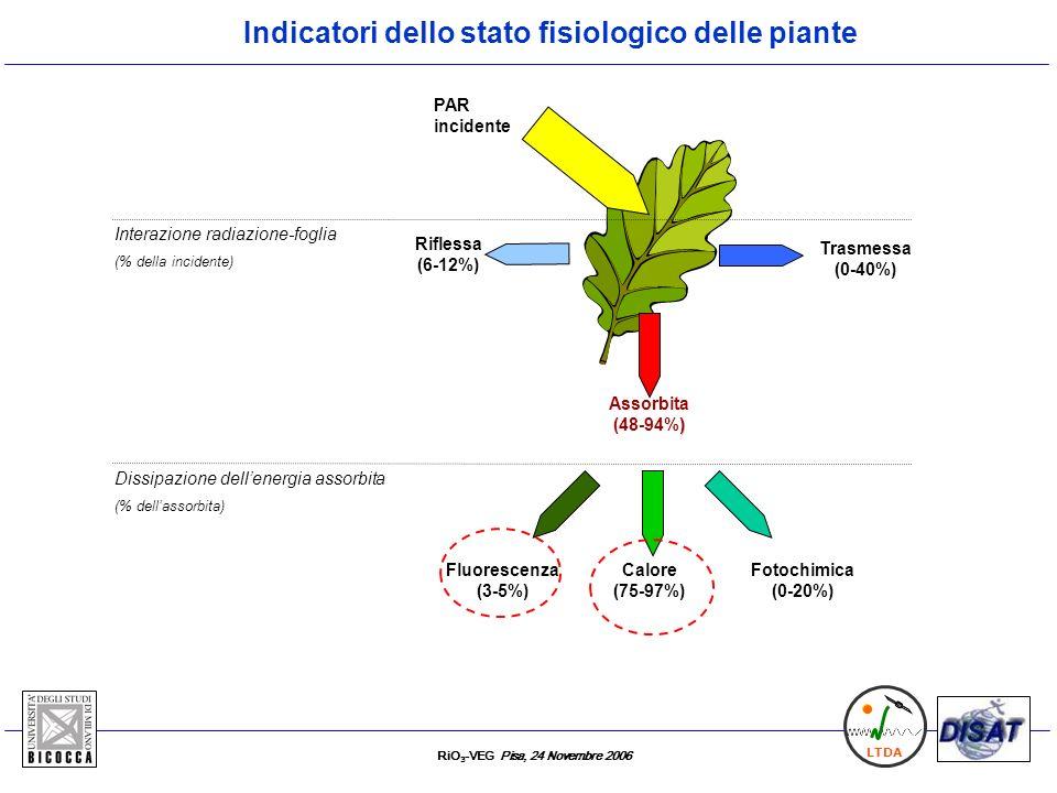 RiO 3 -VEG Pisa, 24 Novembre 2006 LTDA Calore (75-97%) Fluorescenza (3-5%) Riflessa (6-12%) Assorbita ) (48-94%) Fotochimica (0-20%) PAR incidente Tra