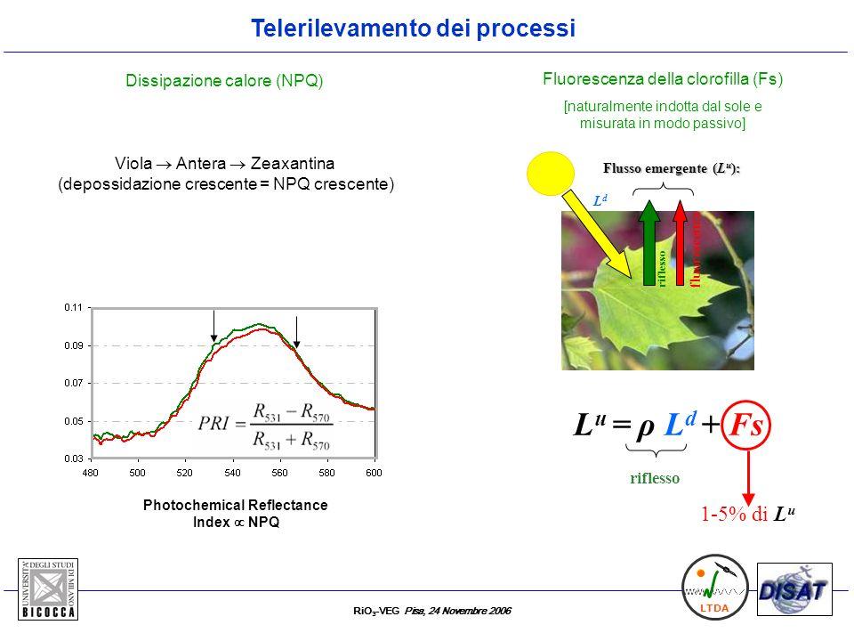 RiO 3 -VEG Pisa, 24 Novembre 2006 LTDA Telerilevamento dei processi L u = ρ L d + Fs Flusso emergente (L u ): fluorescenza riflesso LdLd 1-5% di L u F