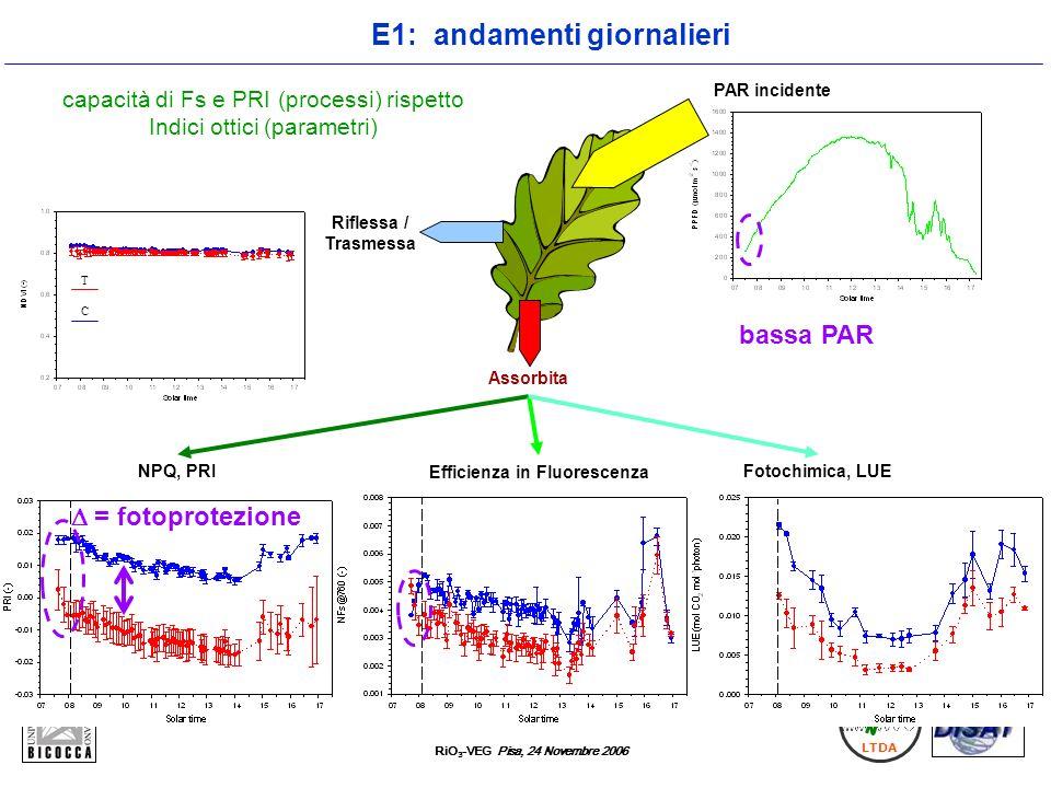RiO 3 -VEG Pisa, 24 Novembre 2006 LTDA capacità di Fs e PRI (processi) rispetto Indici ottici (parametri) Efficienza in Fluorescenza NPQ, PRI Riflessa