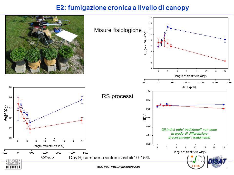RiO 3 -VEG Pisa, 24 Novembre 2006 LTDA E2: fumigazione cronica a livello di canopy T C Day 9, comparsa sintomi visibili 10-15% Gli Indici ottici tradi