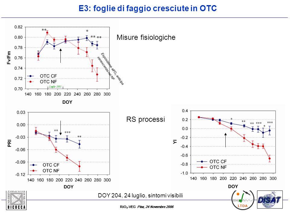 RiO 3 -VEG Pisa, 24 Novembre 2006 LTDA E3: foglie di faggio cresciute in OTC Esposizione allO 3 anticipa senescenza nel NF Luglio 2005 Misure fisiolog