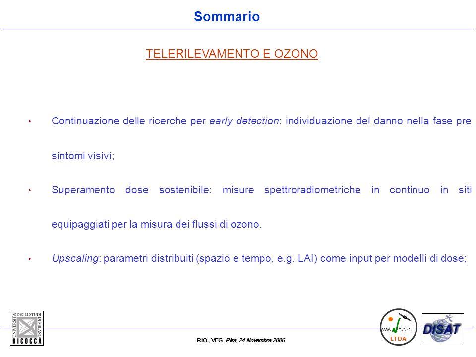 RiO 3 -VEG Pisa, 24 Novembre 2006 LTDA Sommario TELERILEVAMENTO E OZONO Continuazione delle ricerche per early detection: individuazione del danno nel
