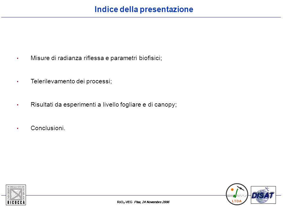 RiO 3 -VEG Pisa, 24 Novembre 2006 LTDA Misure di radianza riflessa e parametri biofisici; Telerilevamento dei processi; Risultati da esperimenti a liv