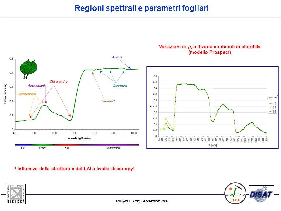 RiO 3 -VEG Pisa, 24 Novembre 2006 LTDA Esperimenti condotti In camere di fumigazione Esperimenti 1,2 1) Leaf level: Pioppo (2005) 26 giorni consecutivi f.c.