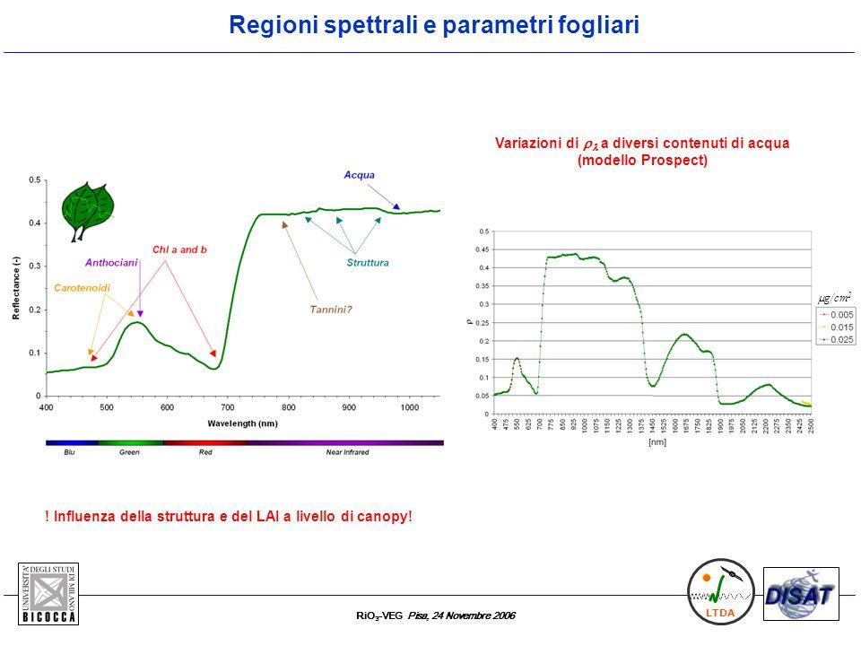 RiO 3 -VEG Pisa, 24 Novembre 2006 LTDA Regioni spettrali e parametri fogliari .