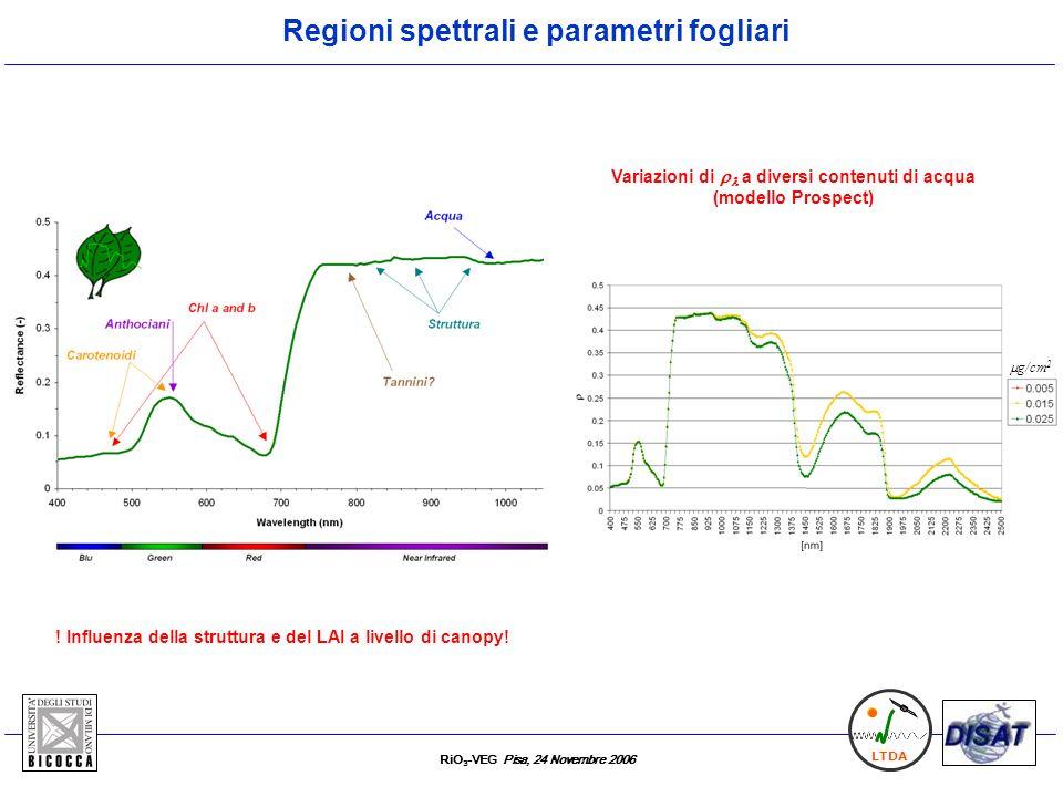 RiO 3 -VEG Pisa, 24 Novembre 2006 LTDA E1: evoluzione temporale (midday) RS processi T C Day 26, comparsa differenze in F v /F m (Fluorescenza attiva) e sintomi visibili Misure fisiologiche
