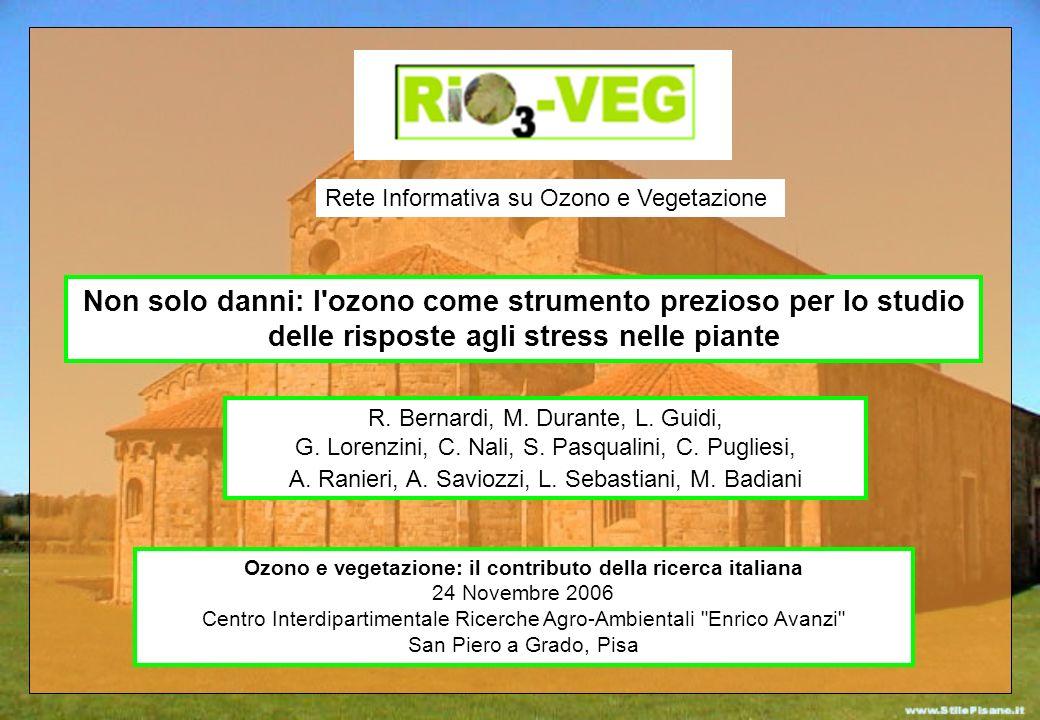 Non solo danni: l'ozono come strumento prezioso per lo studio delle risposte agli stress nelle piante R. Bernardi, M. Durante, L. Guidi, G. Lorenzini,