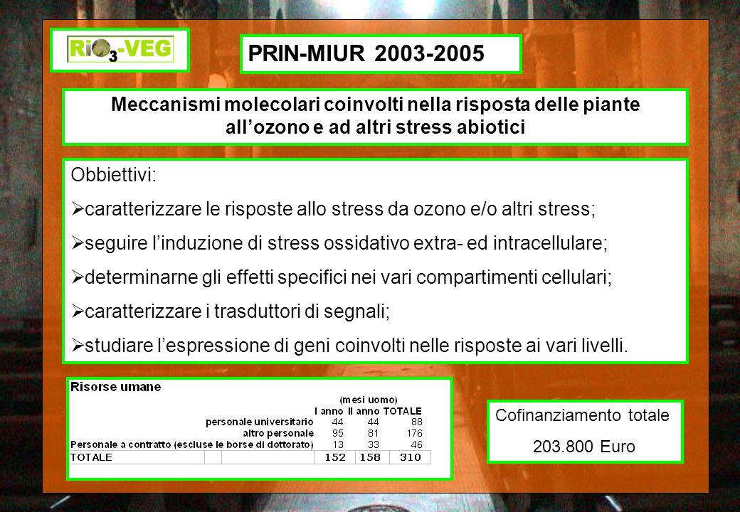 PRIN-MIUR 2003-2005 Meccanismi molecolari coinvolti nella risposta delle piante allozono e ad altri stress abiotici Obbiettivi: caratterizzare le risp