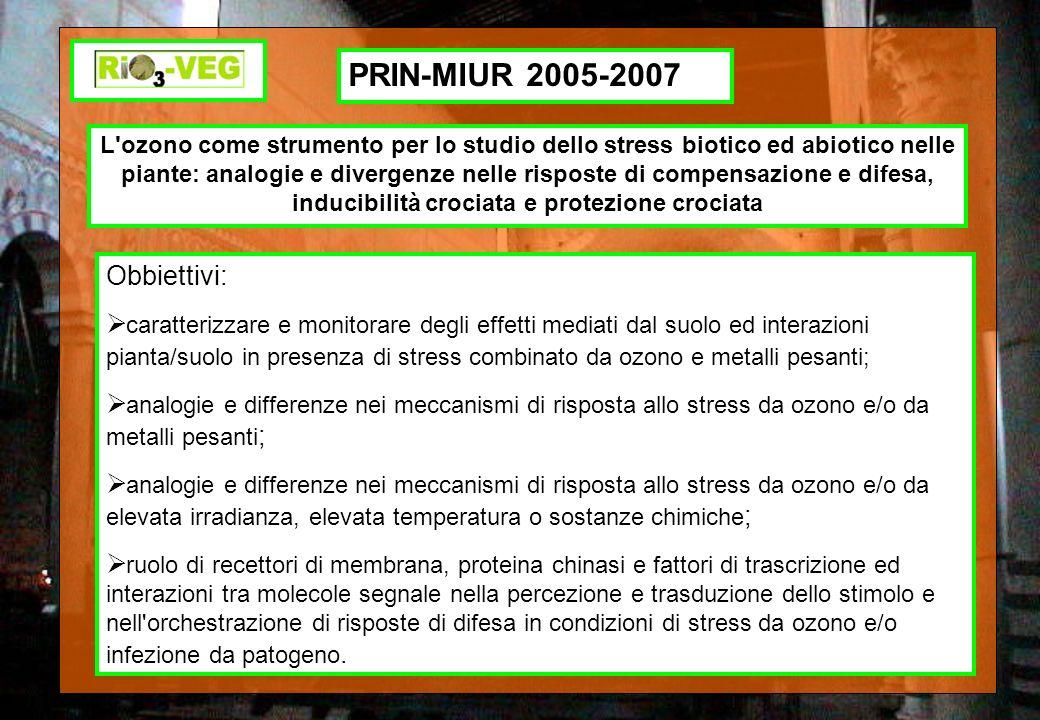 PRIN-MIUR 2005-2007 L'ozono come strumento per lo studio dello stress biotico ed abiotico nelle piante: analogie e divergenze nelle risposte di compen