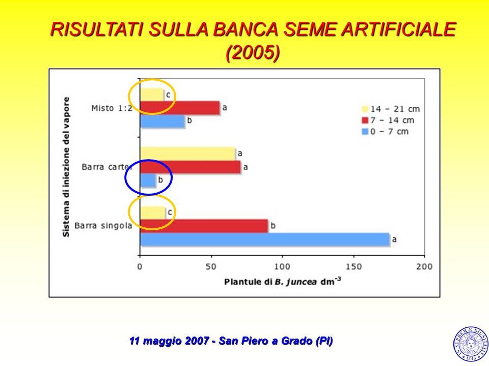 RISULTATI SULLA BANCA SEME ARTIFICIALE (2005) 11 maggio 2007 - San Piero a Grado (PI)