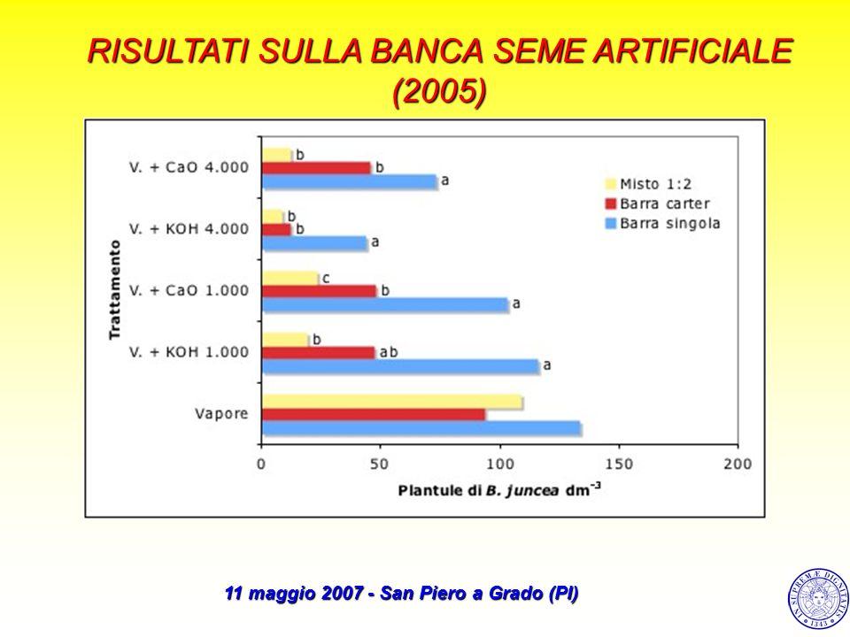RISULTATI SULLA BANCA SEME ARTIFICIALE (2005)