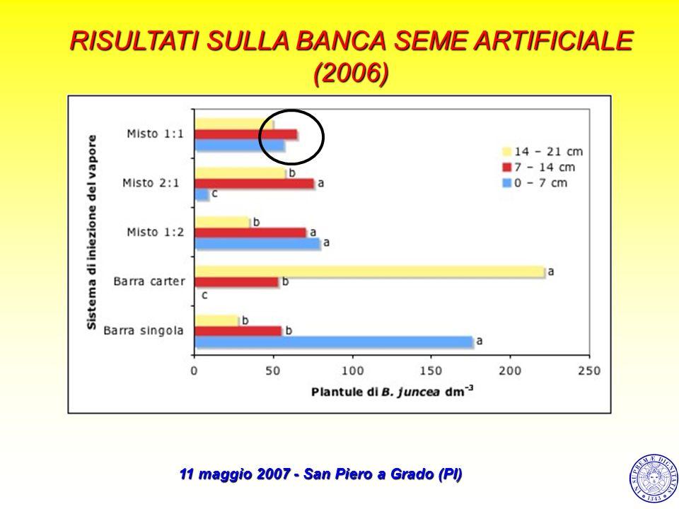 (2006) 11 maggio 2007 - San Piero a Grado (PI)