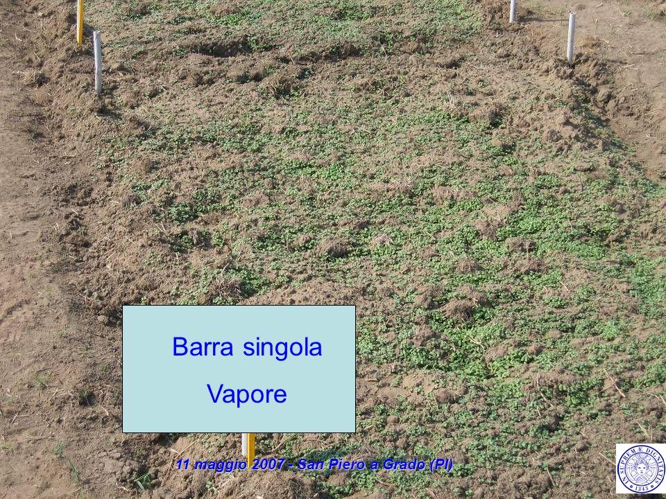 Barra singola Vapore 11 maggio 2007 - San Piero a Grado (PI)