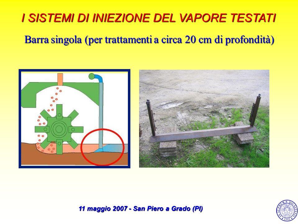 RISULTATI SULLA BANCA SEME ARTIFICIALE (2006)