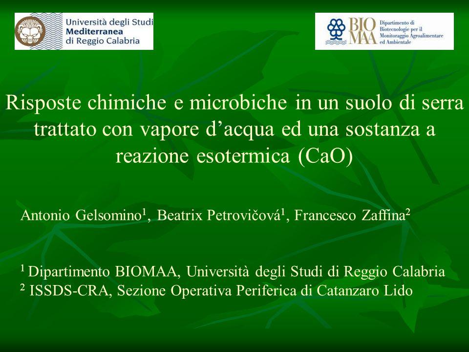 Risposte chimiche e microbiche in un suolo di serra trattato con vapore dacqua ed una sostanza a reazione esotermica (CaO) Antonio Gelsomino 1, Beatri