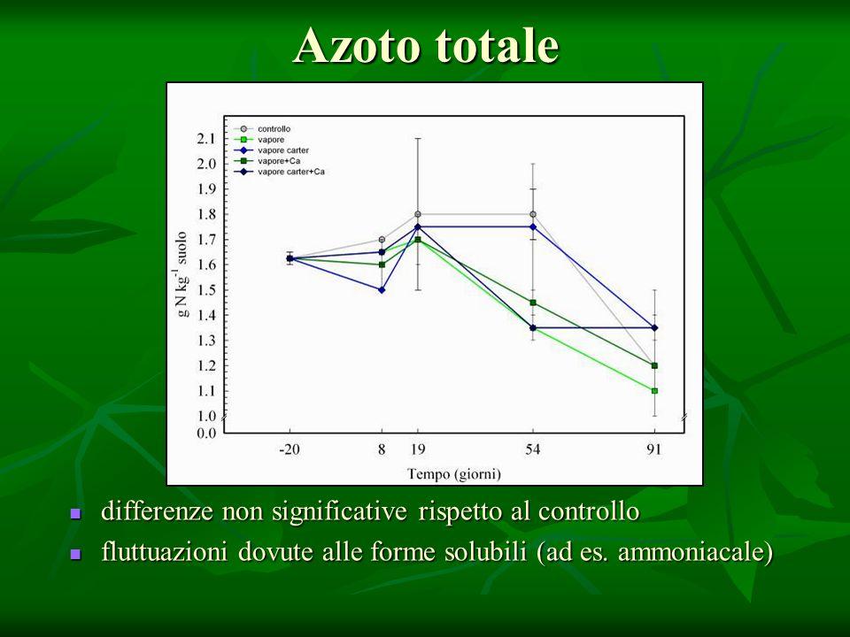 Azoto totale differenze non significative rispetto al controllo differenze non significative rispetto al controllo fluttuazioni dovute alle forme solubili (ad es.