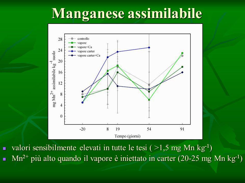 Manganese assimilabile valori sensibilmente elevati in tutte le tesi ( >1,5 mg Mn kg -1 ) valori sensibilmente elevati in tutte le tesi ( >1,5 mg Mn kg -1 ) Mn 2+ più alto quando il vapore è iniettato in carter (20-25 mg Mn kg -1 ) Mn 2+ più alto quando il vapore è iniettato in carter (20-25 mg Mn kg -1 )