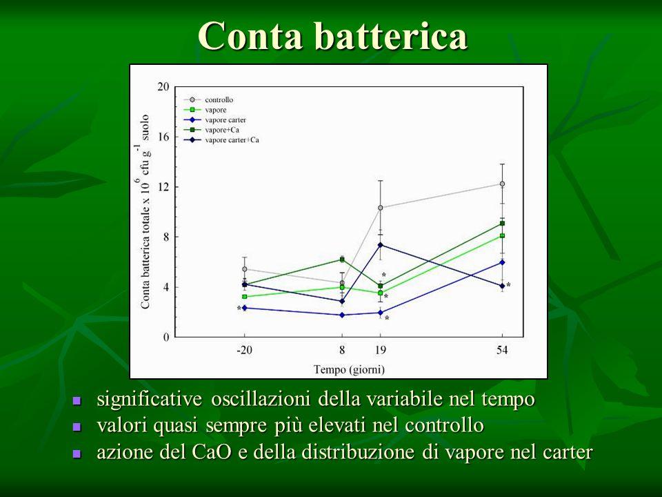Conta batterica significative oscillazioni della variabile nel tempo significative oscillazioni della variabile nel tempo valori quasi sempre più elev