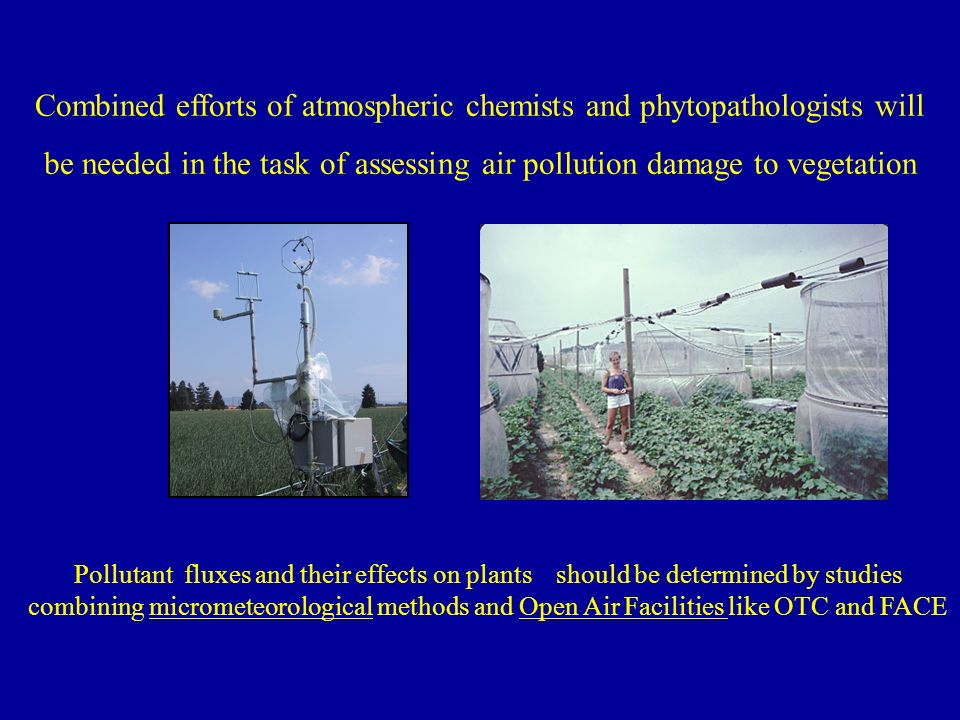 Pollutant fluxes and their effects on plants should be determined by studies combining micrometeorological methods and Open Air Facilities like OTC and FACE Combined efforts of atmospheric chemists and phytopathologists will be needed in the task of assessing air pollution damage to vegetation