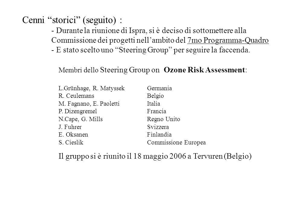 Cenni storici (seguito) : - Durante la riunione di Ispra, si è deciso di sottomettere alla Commissione dei progetti nellambito del 7mo Programma-Quadro - E stato scelto uno Steering Group per seguire la faccenda.