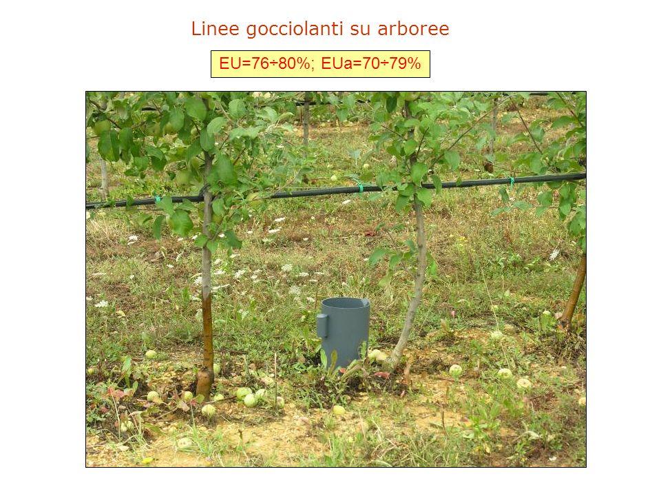 Linee gocciolanti su erbacee e ortive EU=74÷82%; EUa=78÷83%