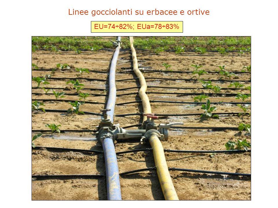 Gestione irrigua (applicazione) su base stagionale Rilievi strumentali: -caratterizzazione idrologica dei suoli; -impostazione del bilancio idrologico.