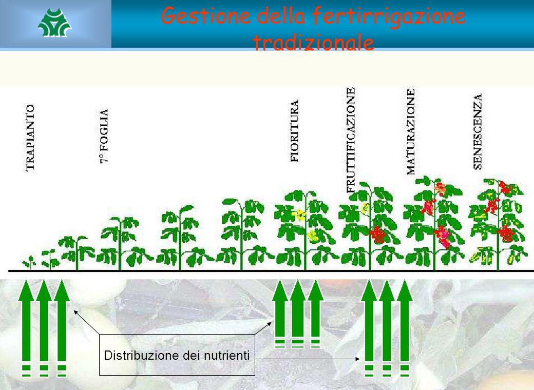 Gestione della fertirrigazione tradizionale Distribuzione dei nutrienti