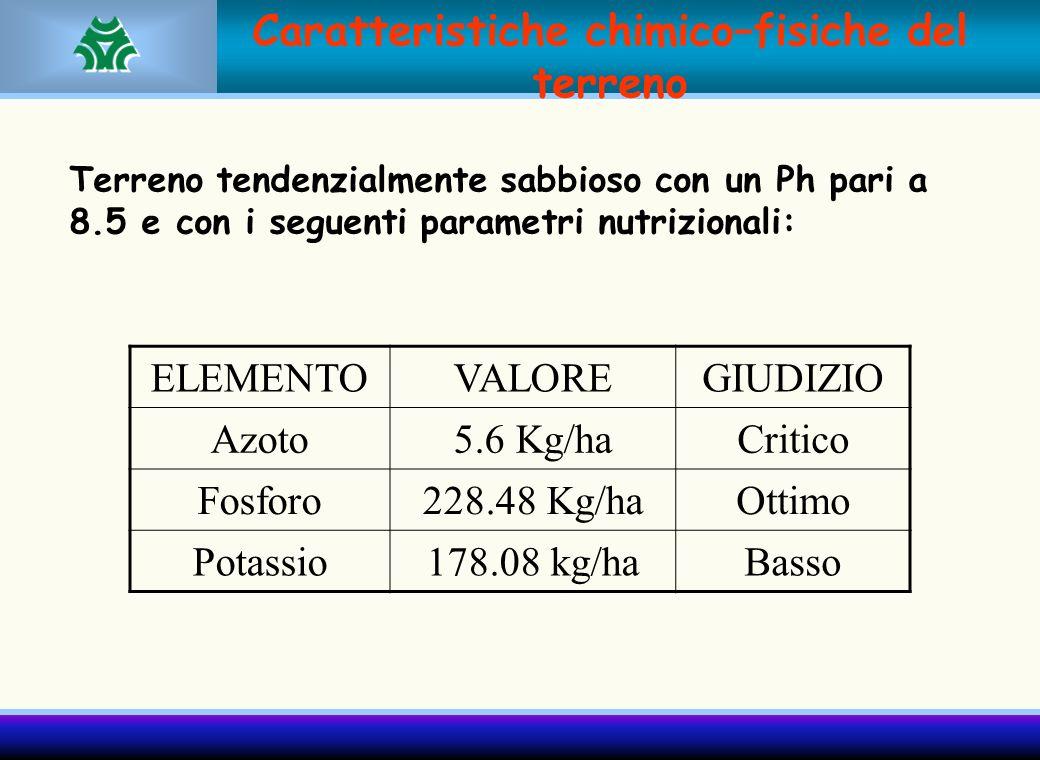 Caratteristiche chimico–fisiche del terreno Terreno tendenzialmente sabbioso con un Ph pari a 8.5 e con i seguenti parametri nutrizionali: ELEMENTOVAL