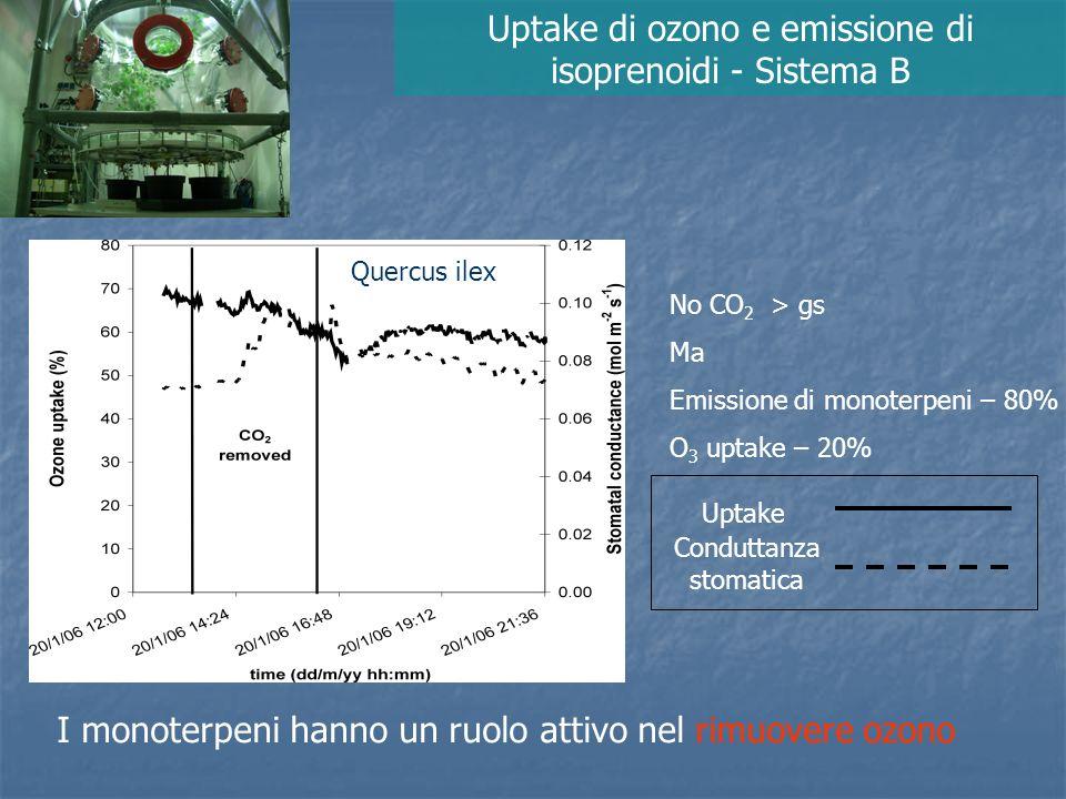 Non emettitori di terpeni emettitori di terpeni piante non trattate piante fumigate con isoprene (3 ppm) piante trattate con fosmidomicina (no isoprenoidi) Uptake di ozono e emissione di terpeni Sistema A Gli isoprenoidi hanno un ruolo attivo nel rimuovere ozono Loreto and Fares, Plant Physiology, in press
