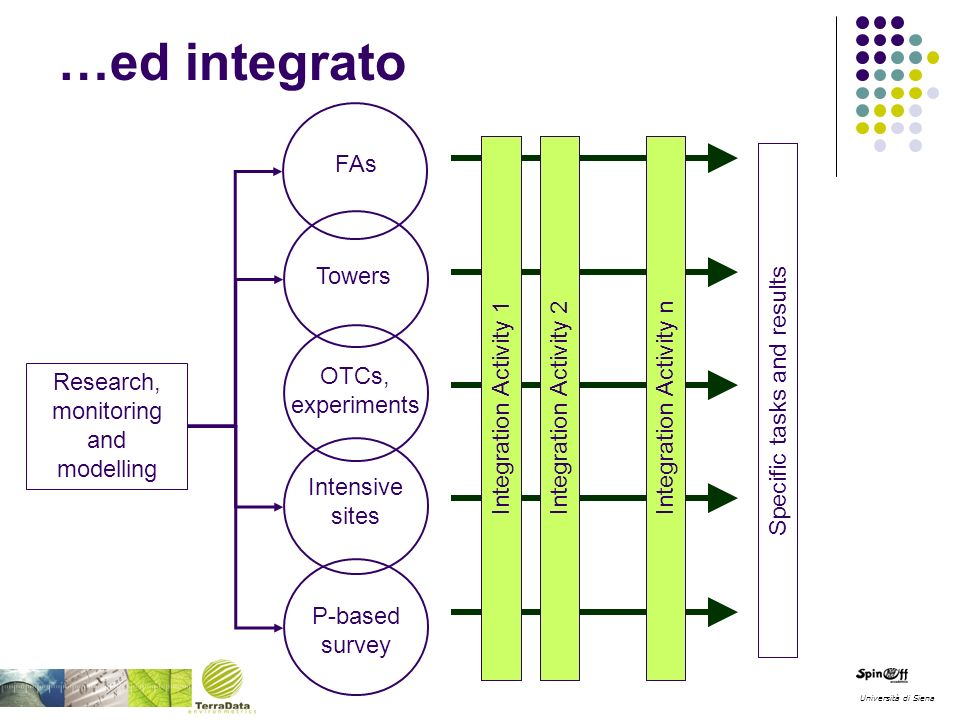 P-based survey Intensive sites OTCs, experiments FAs Towers Specific tasks and results Integration Activity 1 Integration Activity 2Integration Activity n Research, monitoring and modelling Università di Siena …ed integrato