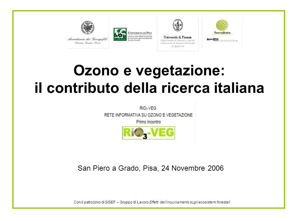 Ozono e vegetazione: il contributo della ricerca italiana San Piero a Grado, Pisa, 24 Novembre 2006 Con il patrocinio di SISEF – Gruppo di Lavoro Effetti dell inquinamento sugli ecosistemi forestali