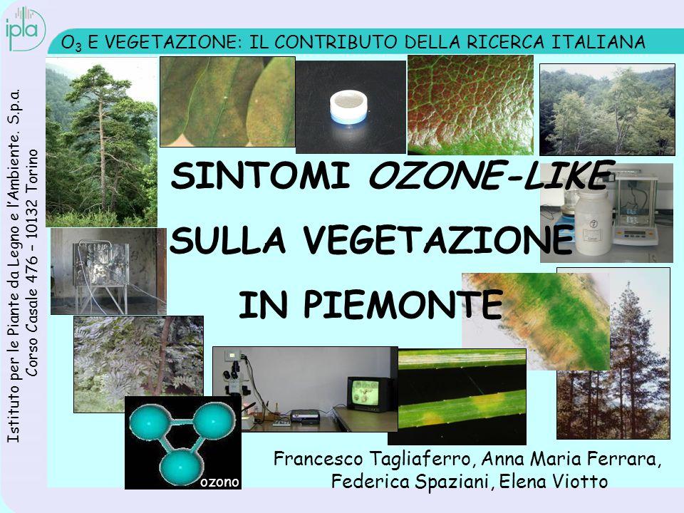 O 3 E VEGETAZIONE: IL CONTRIBUTO DELLA RICERCA ITALIANA I SINTOMI OZONE-LIKE SULLA VEGETAZIONE IN PIEMONTE Istituto per le Piante da Legno e lAmbiente.