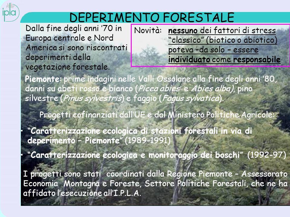 DEPERIMENTO FORESTALE Dalla fine degli anni 70 in Europa centrale e Nord America si sono riscontrati deperimenti della vegetazione forestale.