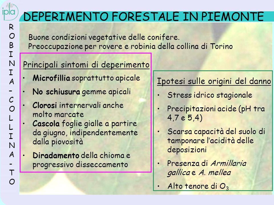 O 3 E FORESTE: I PROGETTI Interreg II (1999-2001) I partners Italia: I.P.L.A.