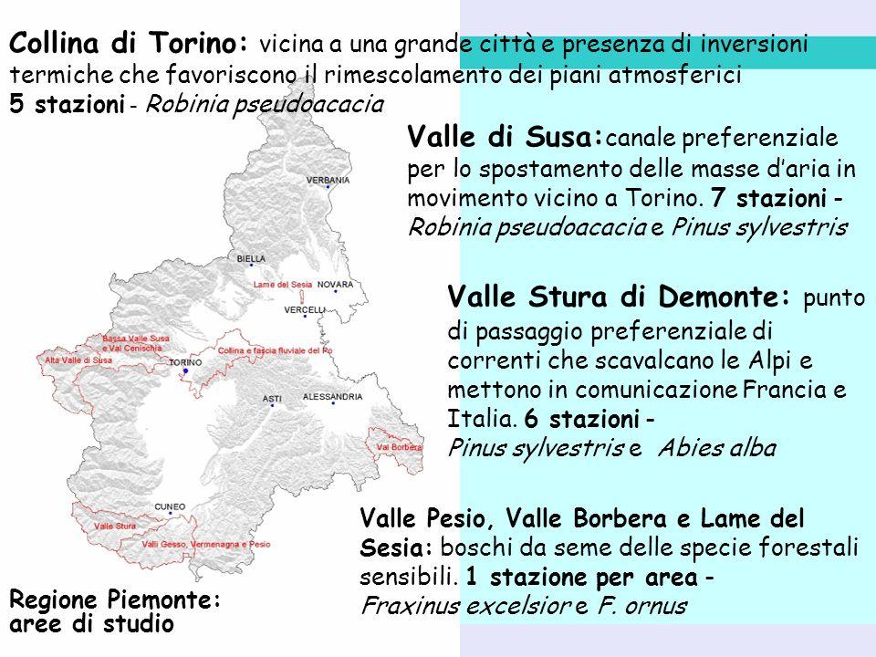 Regione Piemonte: aree di studio Collina di Torino: vicina a una grande città e presenza di inversioni termiche che favoriscono il rimescolamento dei piani atmosferici 5 stazioni - Robinia pseudoacacia Valle di Susa: canale preferenziale per lo spostamento delle masse daria in movimento vicino a Torino.