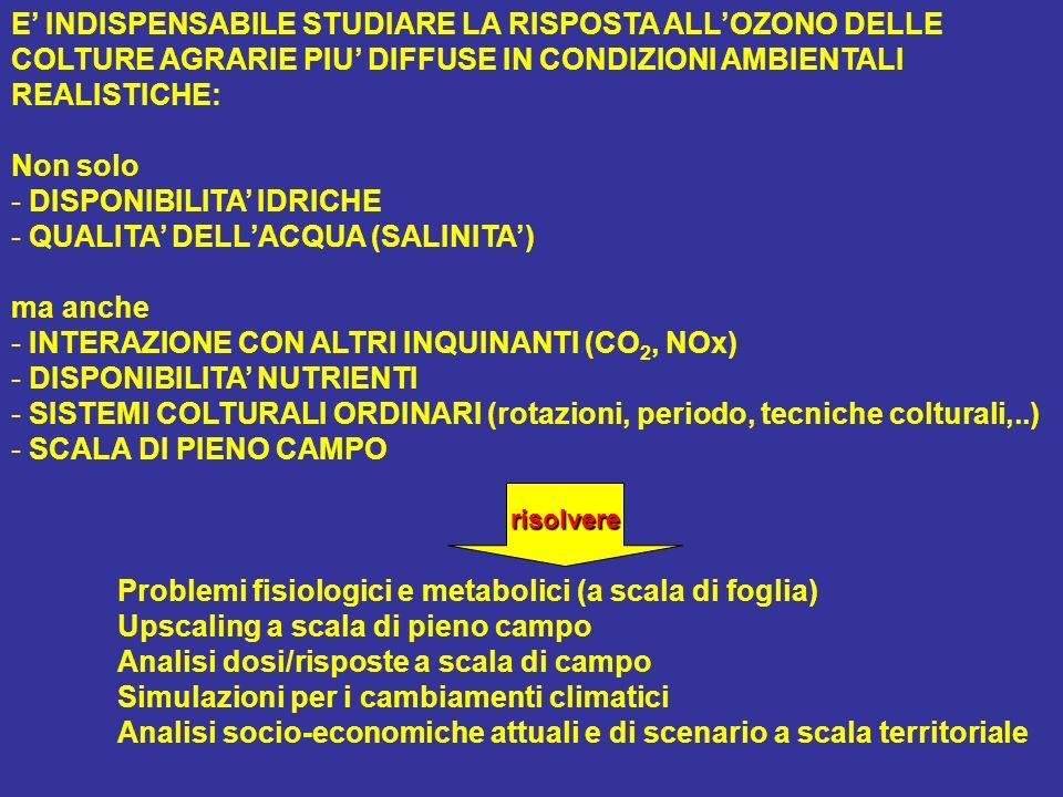 E INDISPENSABILE STUDIARE LA RISPOSTA ALLOZONO DELLE COLTURE AGRARIE PIU DIFFUSE IN CONDIZIONI AMBIENTALI REALISTICHE: Non solo - DISPONIBILITA IDRICHE - QUALITA DELLACQUA (SALINITA) ma anche - INTERAZIONE CON ALTRI INQUINANTI (CO 2, NOx) - DISPONIBILITA NUTRIENTI - SISTEMI COLTURALI ORDINARI (rotazioni, periodo, tecniche colturali,..) - SCALA DI PIENO CAMPO Problemi fisiologici e metabolici (a scala di foglia) Upscaling a scala di pieno campo Analisi dosi/risposte a scala di campo Simulazioni per i cambiamenti climatici Analisi socio-economiche attuali e di scenario a scala territorialerisolvere