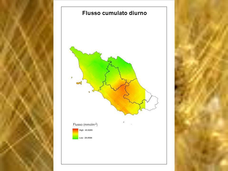 Flusso cumulato diurno Flusso (mmolm -2 )