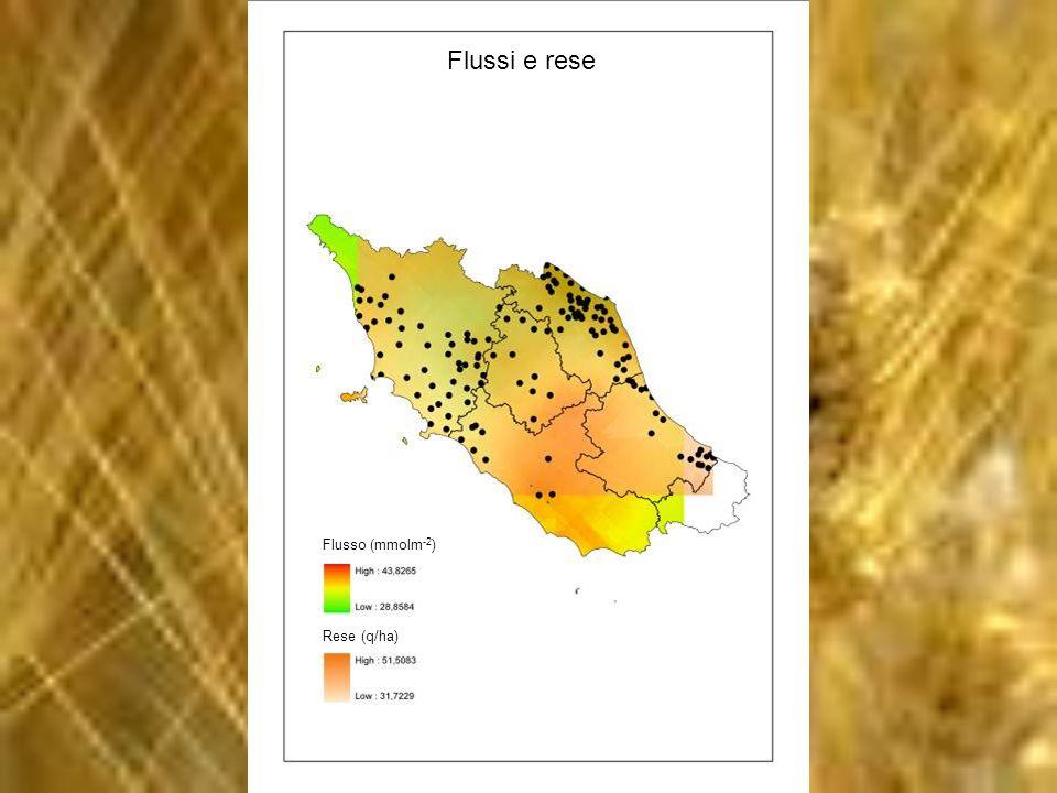 Rese (q/ha) Flusso (mmolm -2 ) Flussi e rese