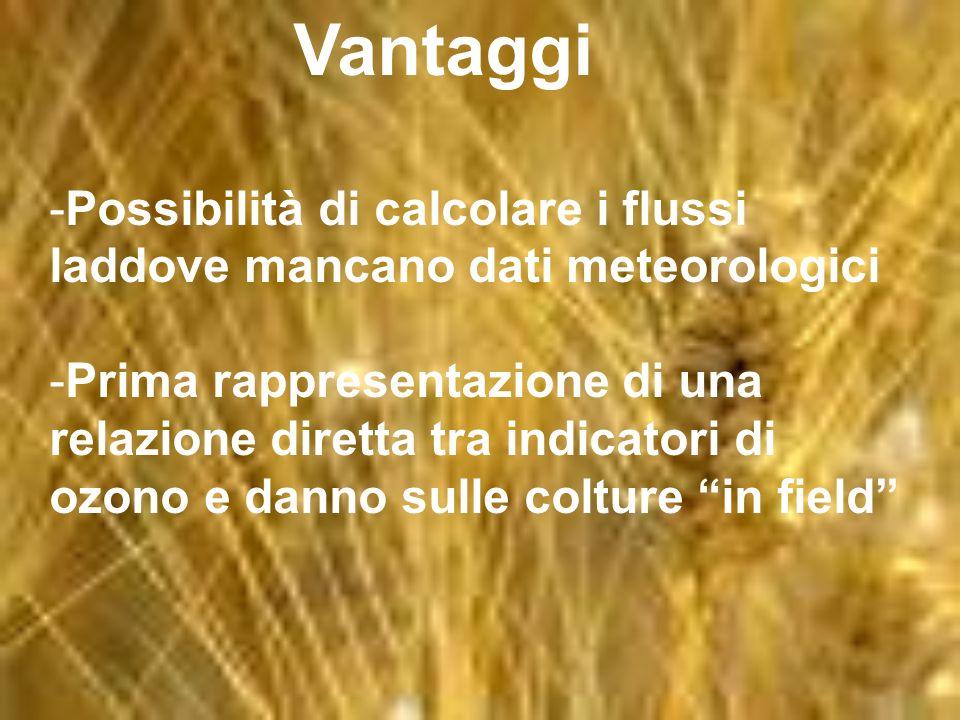 Vantaggi -Possibilità di calcolare i flussi laddove mancano dati meteorologici -Prima rappresentazione di una relazione diretta tra indicatori di ozono e danno sulle colture in field