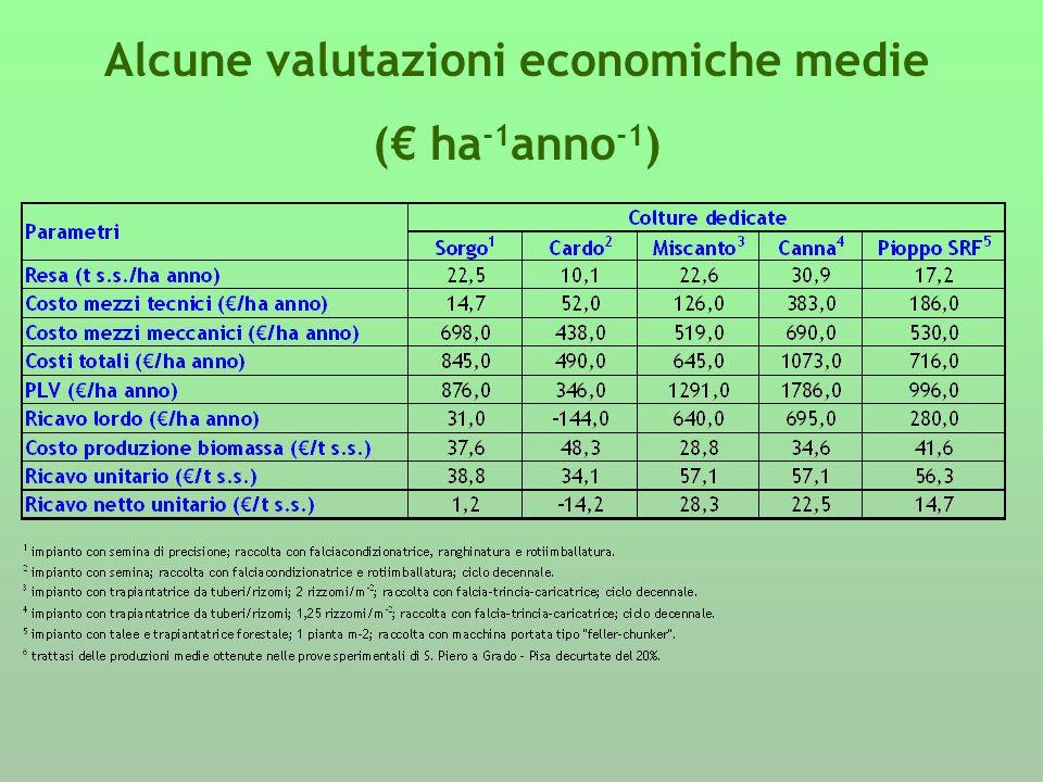 Alcune valutazioni economiche medie ( ha -1 anno -1 )