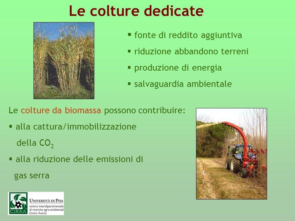 Obiettivi quantitativi del Programma Nazionale Energia Rinnovabile da Biomasse (PNERB -1999): portare a 8-10 Mtep/anno la produzione nazionale di energia dalle biomasse nel 2010-2012 (circa metà biocombustibili liquidi e metà solidi) contro gli attuali 3-3,5 Mtep/anno; incrementare a breve termine la superficie delle colture dedicate fino a 200-250.000 ha ed in tempi medio-lunghi fino a 500-600.000 ha