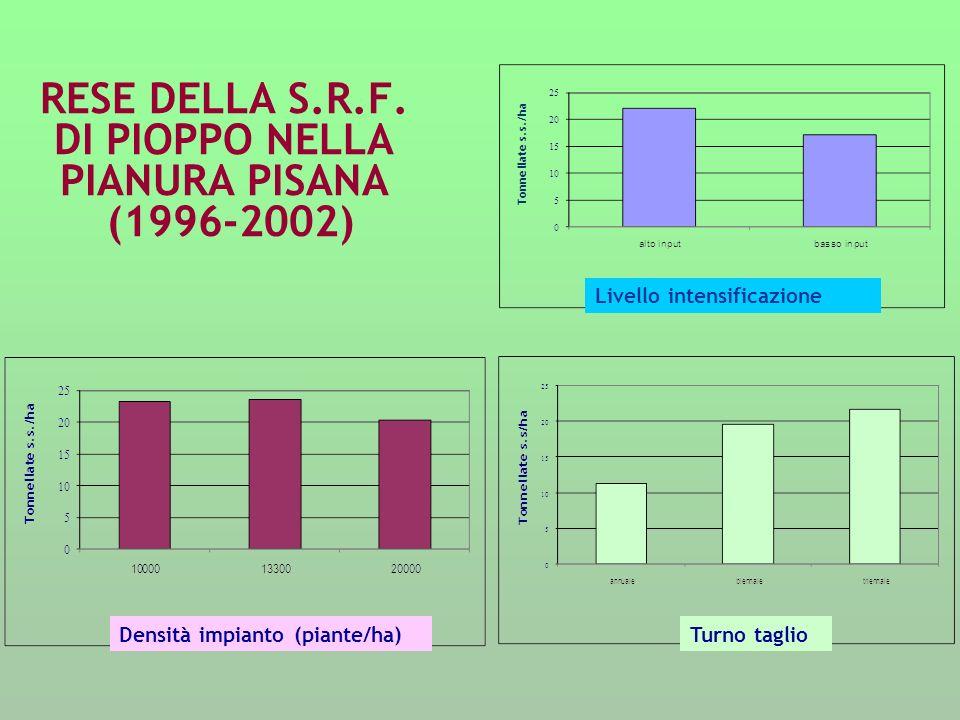 RESE DELLA S.R.F. DI PIOPPO NELLA PIANURA PISANA (1996-2002) Livello intensificazione Densità impianto (piante/ha)Turno taglio
