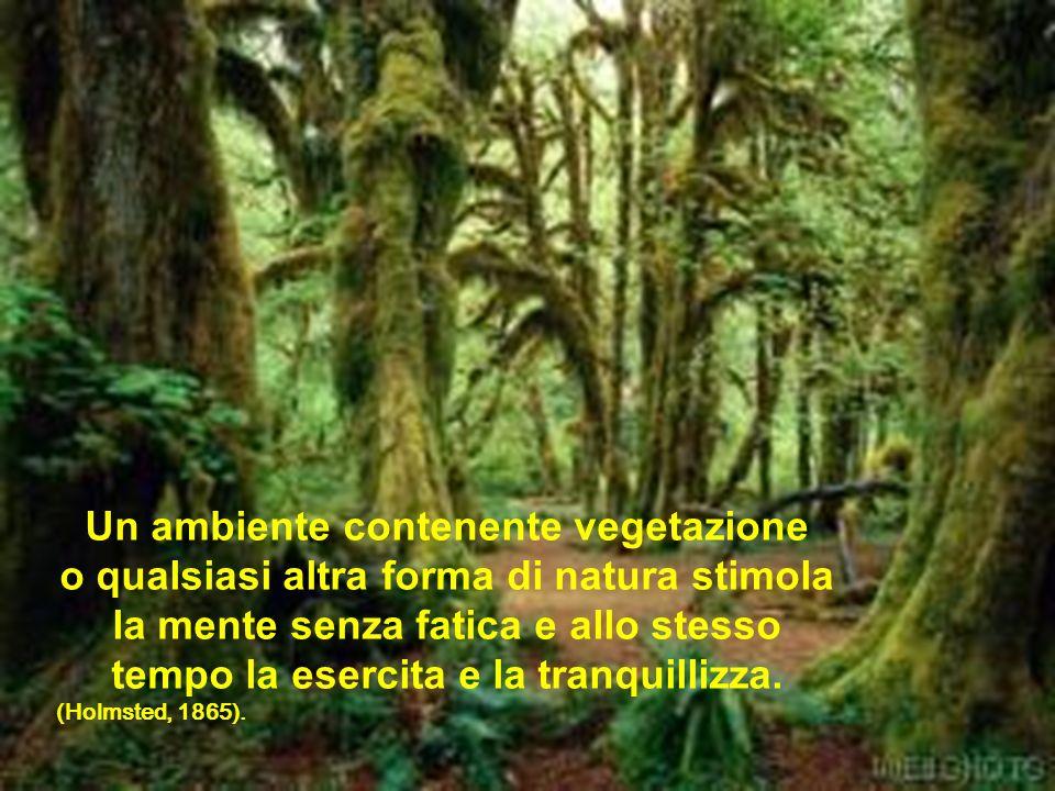 Un ambiente contenente vegetazione o qualsiasi altra forma di natura stimola la mente senza fatica e allo stesso tempo la esercita e la tranquillizza.