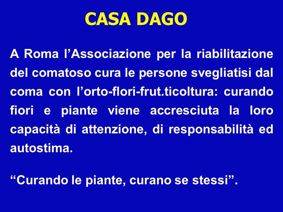 CASA DAGO A Roma lAssociazione per la riabilitazione del comatoso cura le persone svegliatisi dal coma con lorto-flori-frut.ticoltura: curando fiori e