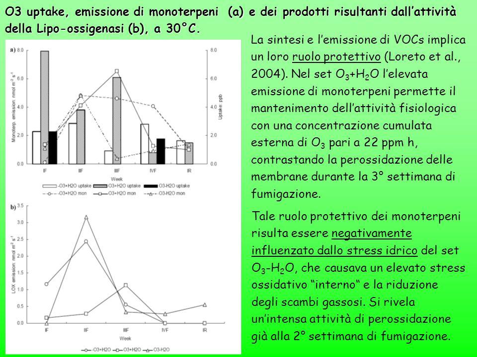 O3 uptake, emissione di monoterpeni (a) e dei prodotti risultanti dallattività della Lipo-ossigenasi (b), a 30°C. La sintesi e lemissione di VOCs impl