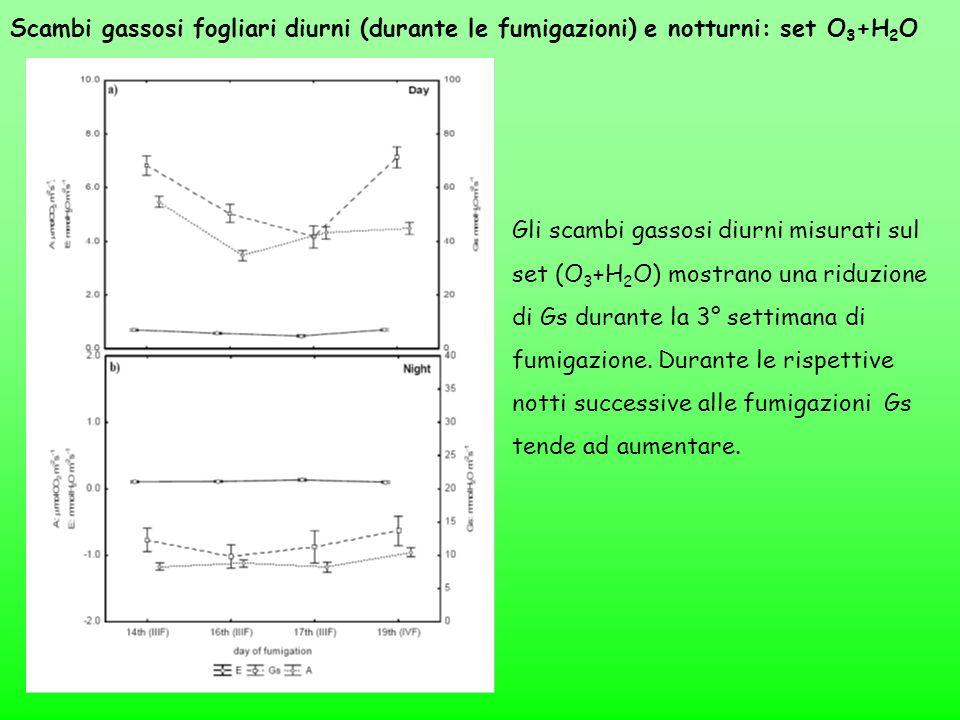 Scambi gassosi fogliari diurni (durante le fumigazioni) e notturni: set O 3 +H 2 O Gli scambi gassosi diurni misurati sul set (O 3 +H 2 O) mostrano un