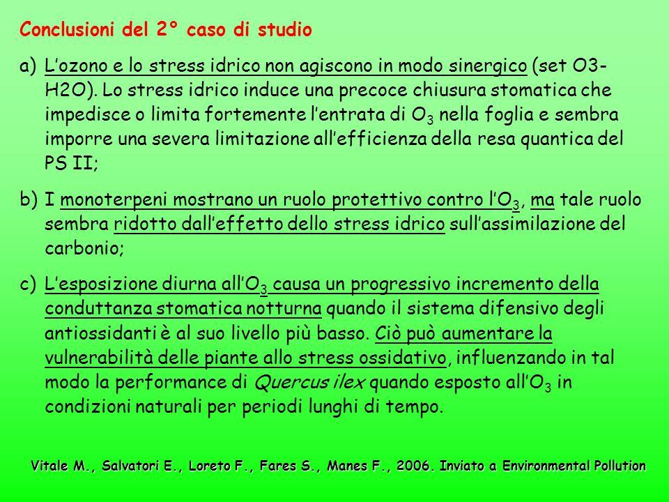Conclusioni del 2° caso di studio a)Lozono e lo stress idrico non agiscono in modo sinergico (set O3- H2O). Lo stress idrico induce una precoce chiusu