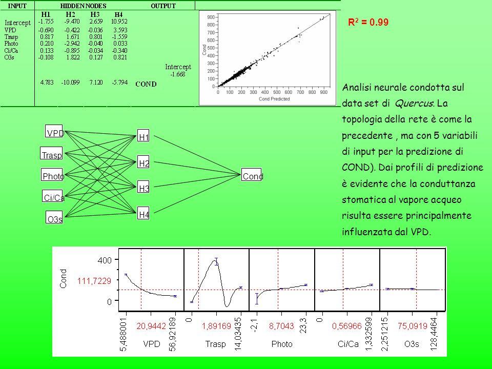 VPD Trasp Photo Ci/Ca H1 H2 H3 H4 Cond O3s Analisi neurale condotta sul data set di Quercus. La topologia della rete è come la precedente, ma con 5 va